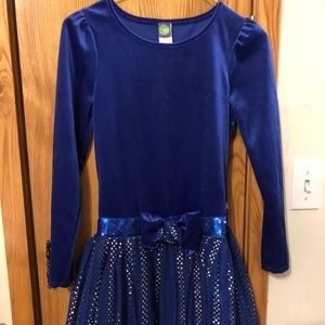 Royal Blue Velvet/Sparkly Girl's Party Dress